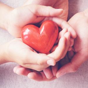 บำรุงหัวใจและหลอดเลือด